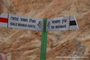 Google Translate עכשיו יכול לתרגם שלטי דרכים