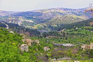 ליפתא ירושלים, בתים נטושים