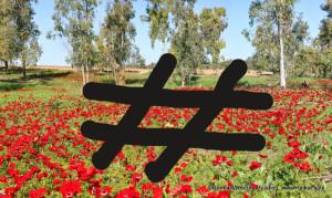 איך לבנות מסע פרסום יעיל עם # hashtag